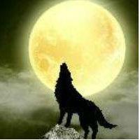 狼月。撕爱|个人档案|酷狗血族网_漫画主播_繁星那里美女图片